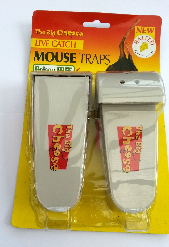trap ease america the big cheese of mouse traps Marketing presentation: trap-ease america  trap-ease america the big cheese of  they face a market in which large volume of low quality low cost mouse traps.